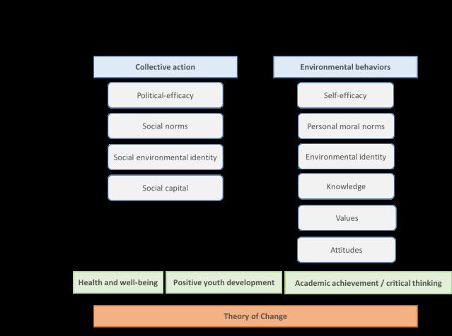 TOC Framework