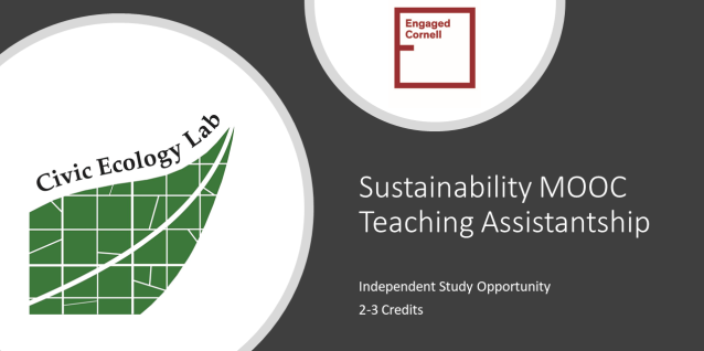 Sustainability MOOC Teaching Assistantship